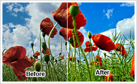 CyberLink TrueTheater Lighting presents brilliant colors and improve image detail to every scene