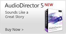 NEW AudioDirector