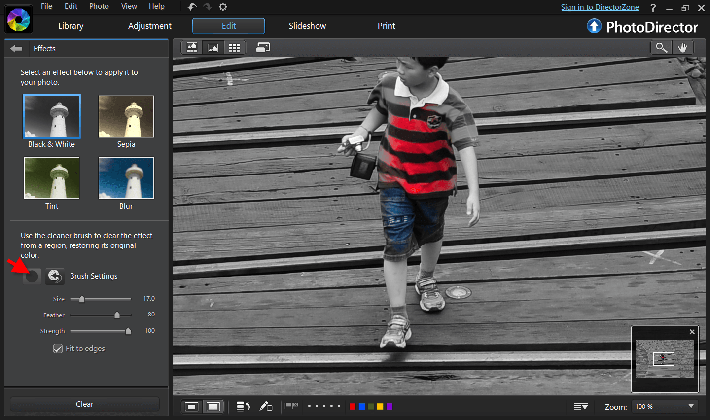 Free online photo editor selective coloring - You Can Rescale The Brush Size By Scrolling Up And Down The Mouse And If You Deselected Outside The Area You Want You Can Always Use The Erase Brush To