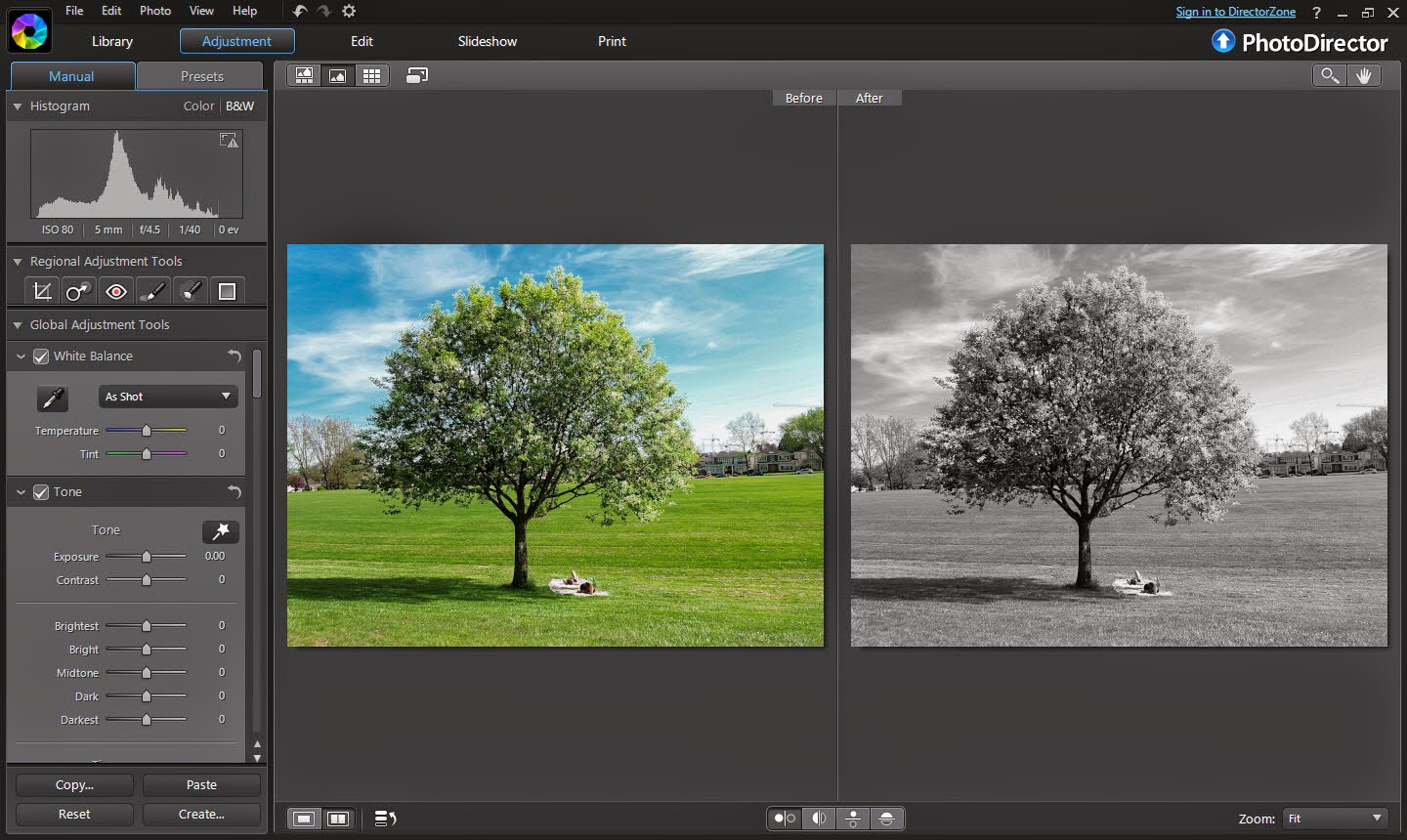 You can further enhance your photo by adjusting the color slider usually color of the sky appears to be brighter after converting to black and white
